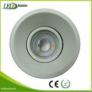 Akcentinis LED šviestuvas baltas reguliuojama šviesos kriptis
